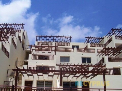 Apartment for rent Peyia Paphos Cyprus 1 2878